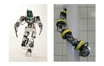 Robots inspirados en la Naturaleza