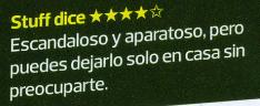 Opinion de Neato