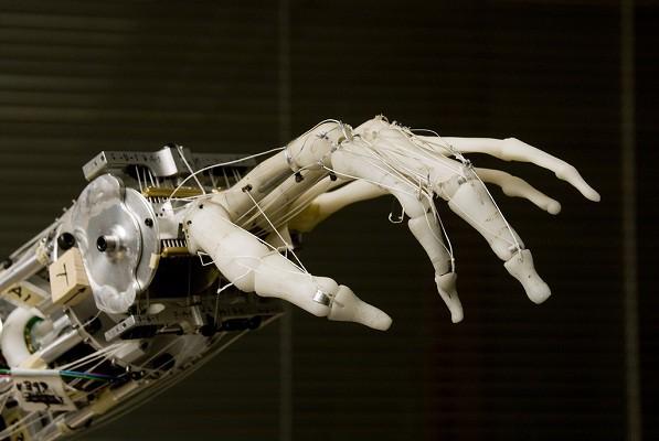 Robots y humanos: ¿Compañeros o rivales?