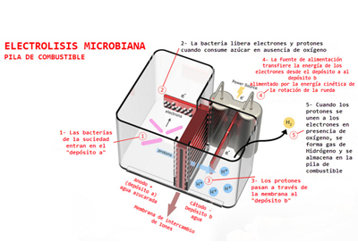 proceso de electrolisis microbiana