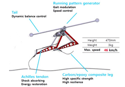 Robot Raptor esquema