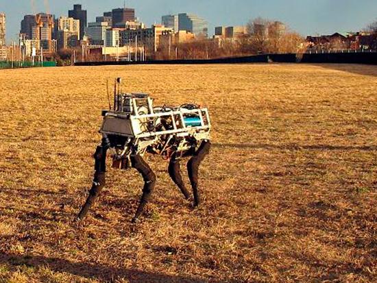 spot mini dog robot articulado