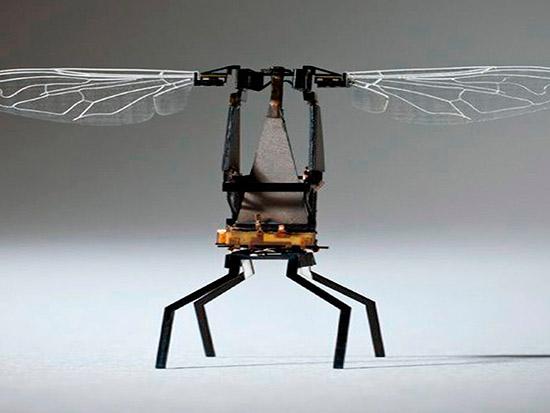 abeja robótica plinizadora